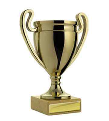 Gold Plastic Cup Winner Achievement Award Trophy 140mm FREE Engraving
