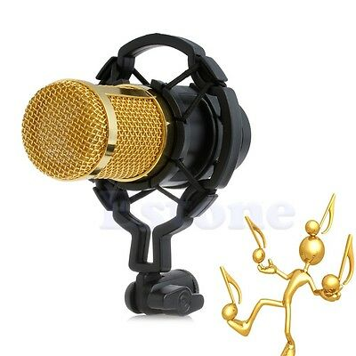 Condenser Sound Recording Microphone With Shock Mount For Braodcasting BM-800