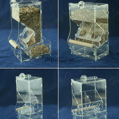 Clear Acrylic Pet Parrot Bird Automatic Cage Feeder Size Small Single Hopper