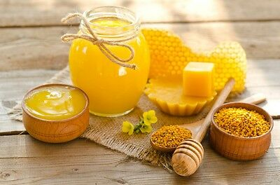Beeswax 100% Pure Canadian 3lb at $12.00/lb Great for Cosmetics and Candles