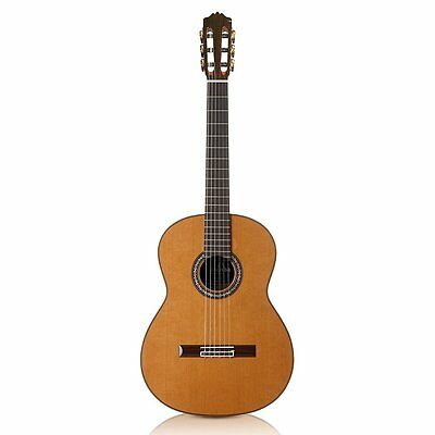Cordoba C10 CD/IN Acoustic Nylon String Solid Cedar Top Classical Guitar w/ Case