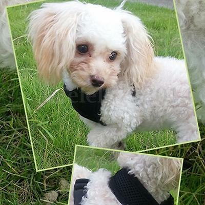 Adjustable Pet Puppy Dog Soft Mesh Vest Strap Harness And Lead Leash Collar Clip