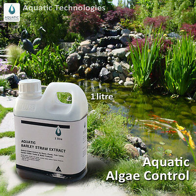 Aquatic Barley Straw Extract 1 lt - For Algae Control in Ponds & Water Features
