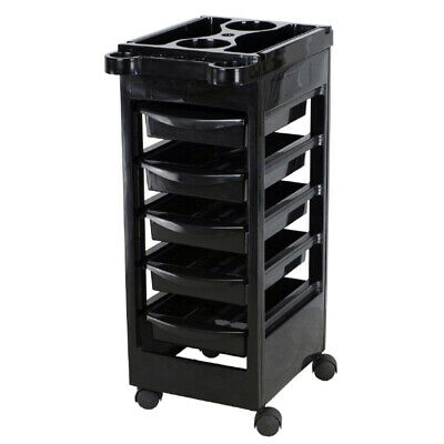 Salon Spa Trolley Storage Cart Coloring Beauty Rollabout Hair Blow Dryer Holder