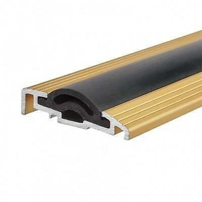 NEW Sealmaster Cyclone Seal - 1000mm - TDG Threshold - Gold