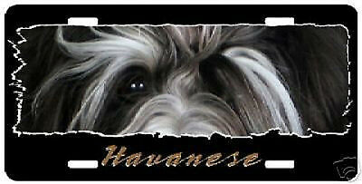 "Havanese # 2  "" The Eyes Have It ""  License Plate"