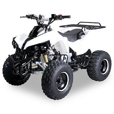 mini quad atv 125cc s10 streethummer gr n kinder benzin. Black Bedroom Furniture Sets. Home Design Ideas