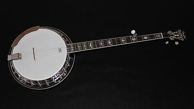 Fender FB58 5-string Resonator Banjo w/ Gigbag
