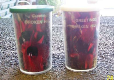 Australia Broken Hill Nsw Sturt Desert Pea Plastic Salt & Pepper Shakers