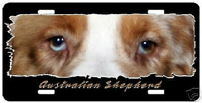 "Australian Shepherd  red ""Eyes Have It "" License plate"