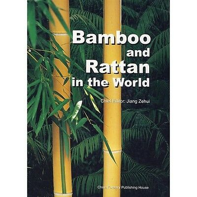 Bamboo and Rattan in the World - China Source