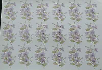 Ceramic Decals Orchid 18 On A Sheet 747813  Right Price