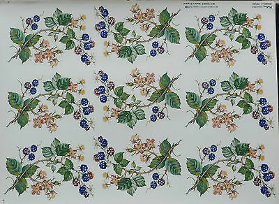 CERAMIC DECALS BRAMBLE 747302 9 ON A SHEET 14 cm HIGHT8  cm WIDERIGHT PRICE