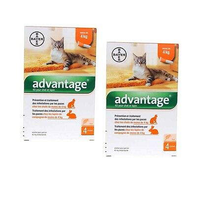 Advantage 40 Chat de moins de 4Kg