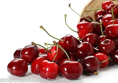 Cherry Fragrance oil for candle making, Soy, paraffin, Bees wax etc