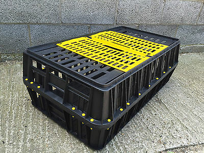 Poultry Crate ***New/unused***
