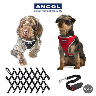NEW Ancol Dog Padded Travel Car & Walking Exercise Harness Seatbelt Black Red