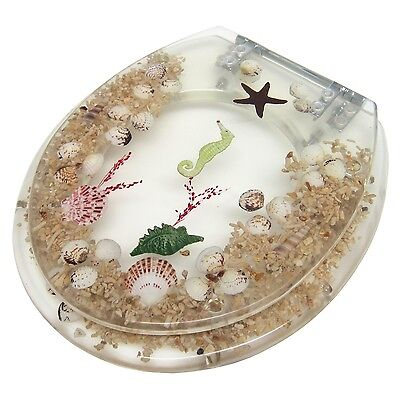 """Elongated Seahorse / Seashell Acrylic Toilet Seat Clear 19"""" INCH"""
