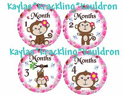 13 Flower Girl Monkey Monthly Stickers Baby Milestone Stickers