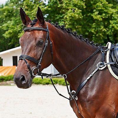 Busse Solibel 5 Point Breastplate Martingale, Good Quality & Great Value