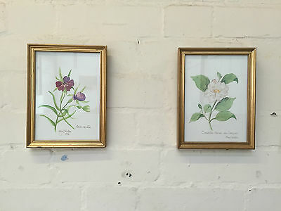 Lot Of 3 Floral / Flower Botanical Illustrations Naive + Contemporary Style - Vr