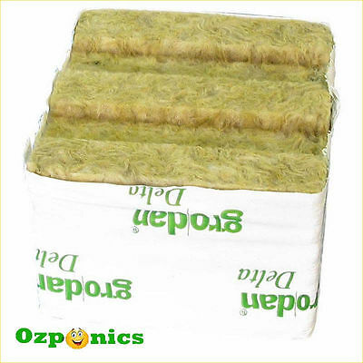 Grodan Wrapped Rockwool Cube 75Mm X 75Mm No Hole For Hydroponics - 50 Pack