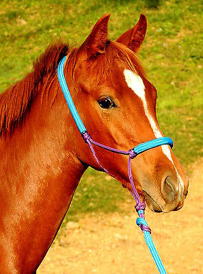 Padded rope halter and lead set PONY/ FOAL/ MINI sizes, choose your colours!!