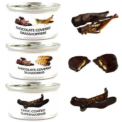 Mix Chocolate Covered Edible Crickets, Silkworms, Superworms, Exotic Thai Bugs