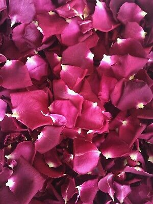 10cups Freeze Dried Red Rose Petals for decoration.A lovely natural rose petals.