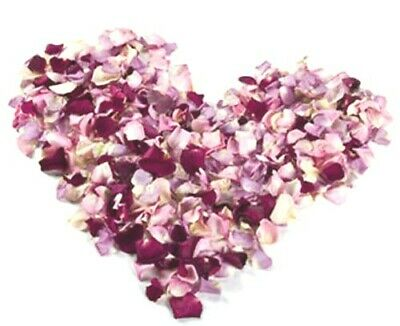 SALE! Lovely colorful  Freeze Dried Rose Petals. 1 Liter box (5 cups).