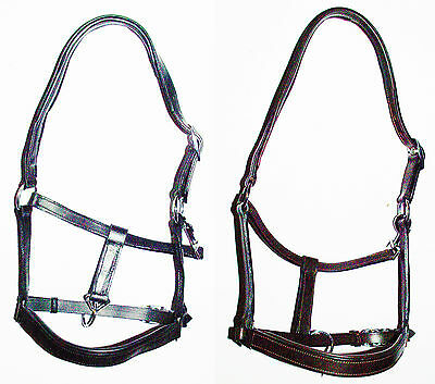 Padded Leather Headcollar-Excellent Quality. Black & Havana in Pony,Cob & Full