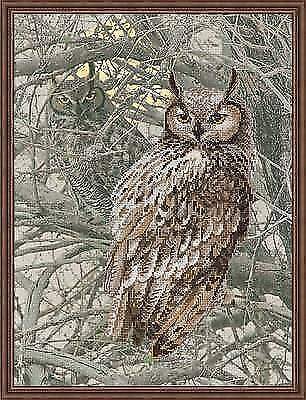 Counted Cross Stitch Kit Riolis - Owl