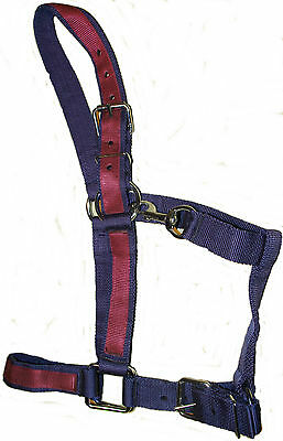 Heavy Horse Headcollar - Free Uk Delivery