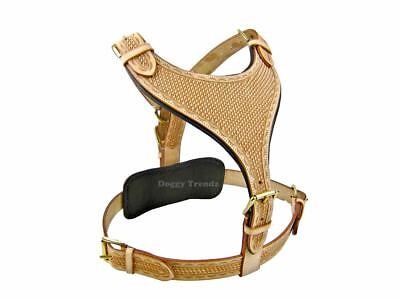 Luxury Hand Tooled Maximus Natural Large Leather Dog Harness Rottweiler Pitbull