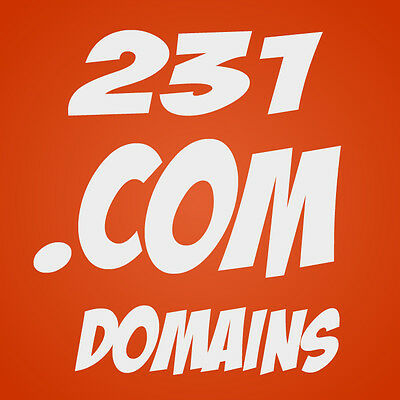 230 Premium Brandable Keyword .com Domain Domains, Portfolio