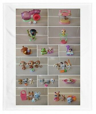littlest pet shop animals  14 to choose from, toucan monkey frog raccoon dog cat