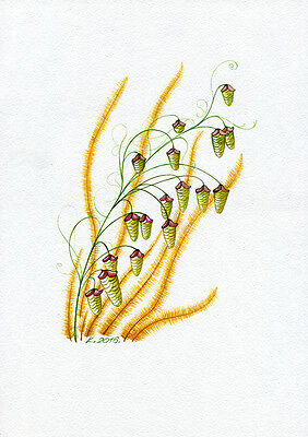 Flowers, Grass, herb, plant, Watercolor Original Painting Art, Quick sketch
