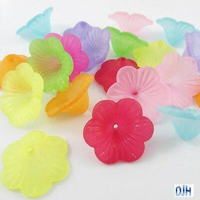 20pcs Petunia Flower Bead Cap Craft Beads Frosted Acrylic Mixed 24x7mm Hole 2mm