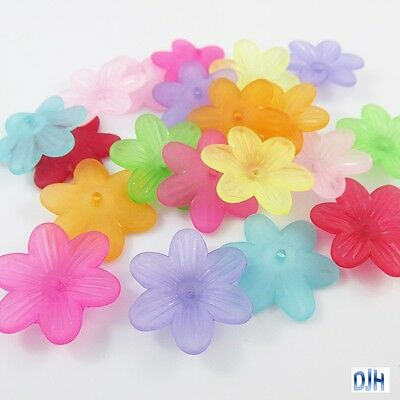 20pcs 6 Petal Flower Bead Cap Craft Beads Frosted Acrylic Mixed 26x23x6mm