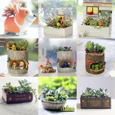 Resin Vintage Patio Garden Planter Bed Herbs Cacti Succulent Bonsai Pot Holder