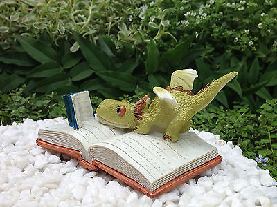Miniature Dollhouse FAIRY GARDEN ~ Mini Dragon Reading on Open Book ~ NEW