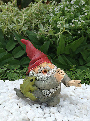 Miniature Dollhouse FAIRY GARDEN ~ Roly Poly Gnome Playing with Frog  ~ NEW