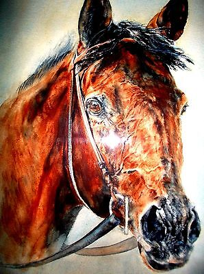 "Race Horse ""Hallowed Envoy""- Signed Watercolor by Adrienne Jacopi Gualco"