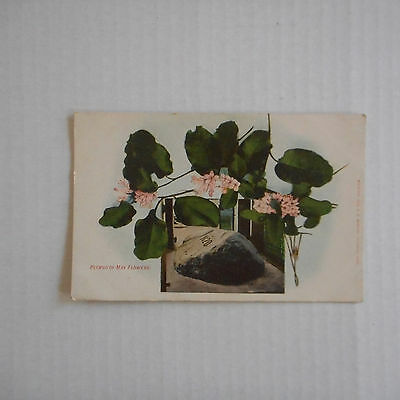 Vintage Postcard Plymouth May Flowers, Plymouth Mass, Plymouth Rock
