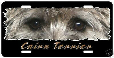 "Cairn Terrier  "" The Eyes Have It "" License Plate"