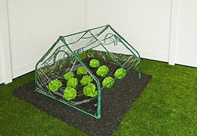 NEW Frame It All Greenhouse 4 Feet by 4 Feet by 36 Inch FREE SHIPPING
