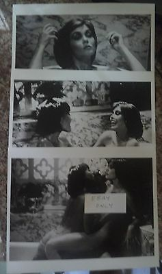 YOUNG LADY CHATTERLEY 3 x PRESS PHOTOS 1977 HARLEE MCBRIDE