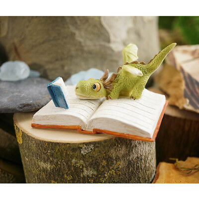Miniature Dollhouse FAIRY GARDEN - Mini Dragon Reading - Accessories
