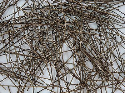 Headpins 60mm Antique Gold 200pc Findings Jewellery Head Pins FREE POSTAGE