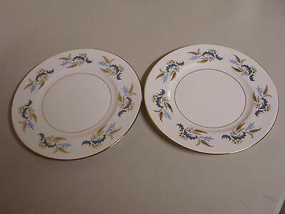 Lot Of 2 Ridgway Golden Rhapsody Bone China Salad Plates 8 1/4 Inches